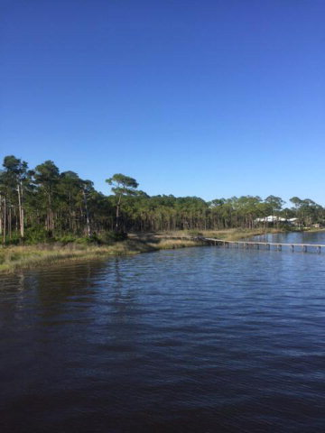 State Highway 180, Gulf Shores, AL 36542
