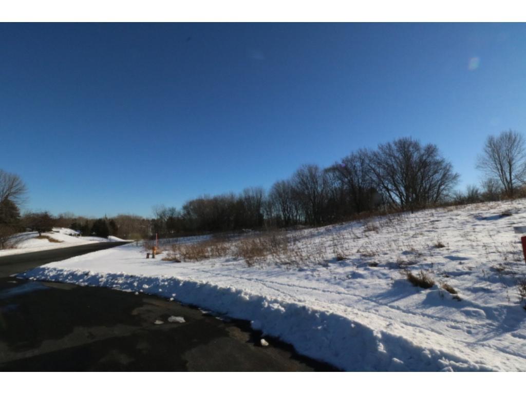 XXXX Parkshore Drive, Arden Hills, MN 55112