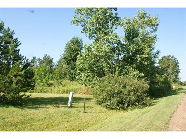 15 LOUISE DR, Mayfield Twp, MI 48446
