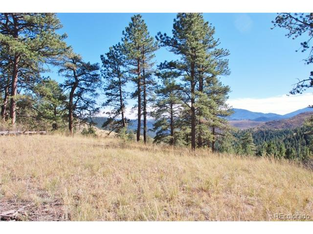 7 (TBD) Turret Peak Trail, Pine, CO 80470