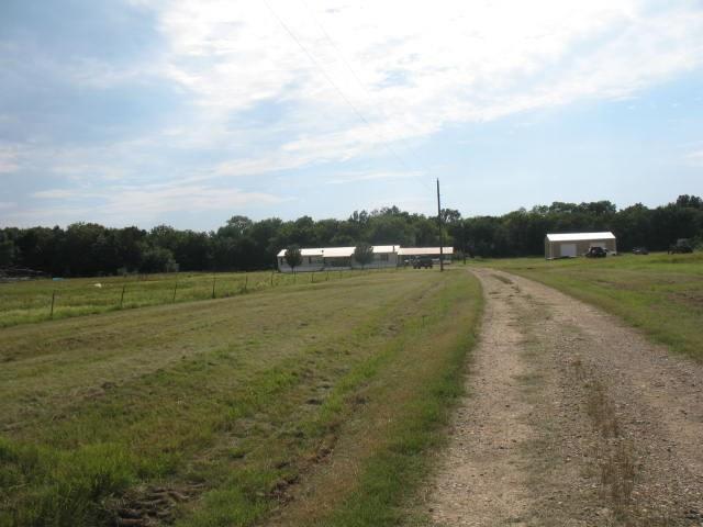 1223 CR 3569 WS, Sulphur Bluff, TX 75481