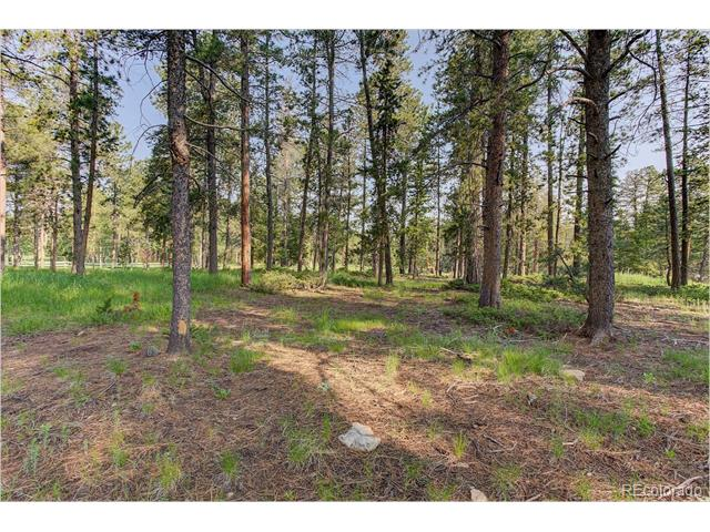 Oehlmann Avenue, Conifer, CO 80433