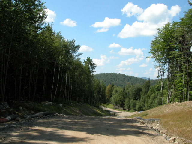 Lot 12 Stanton Hill Ln., Long Lake, NY 12847