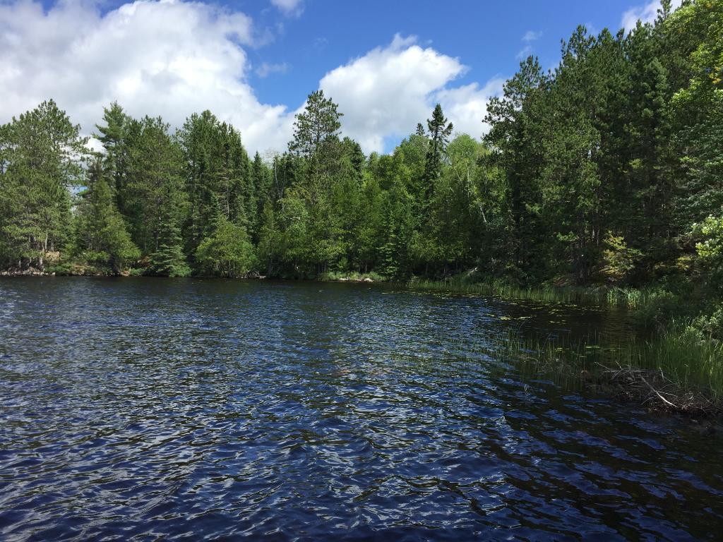 XXX Elbow Lake, Beatty Twp, MN 55723