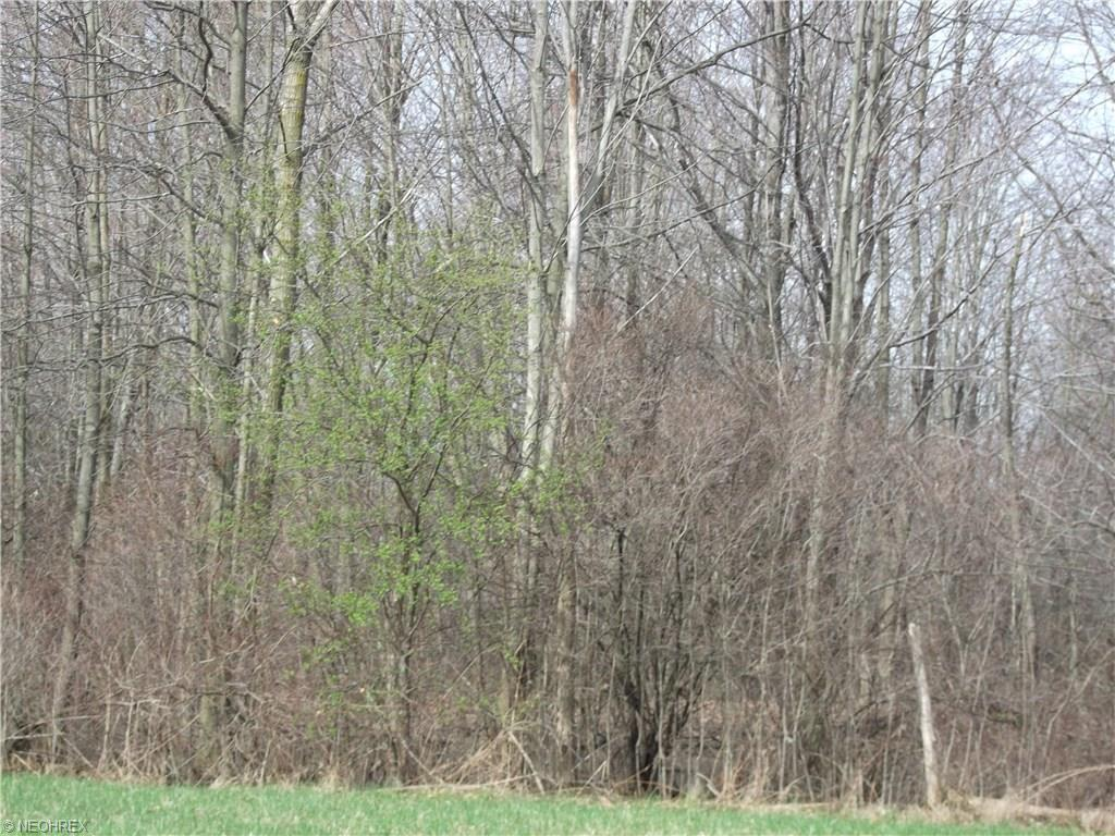 6160 State Route 45, Lordstown, OH 44481