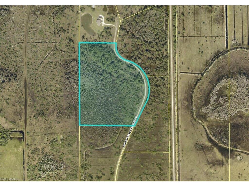 19100 Corkscrew Estates CT, ESTERO, FL 33928