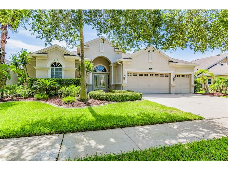 17738 CURRIE FORD DRIVE, LUTZ, FL 33558