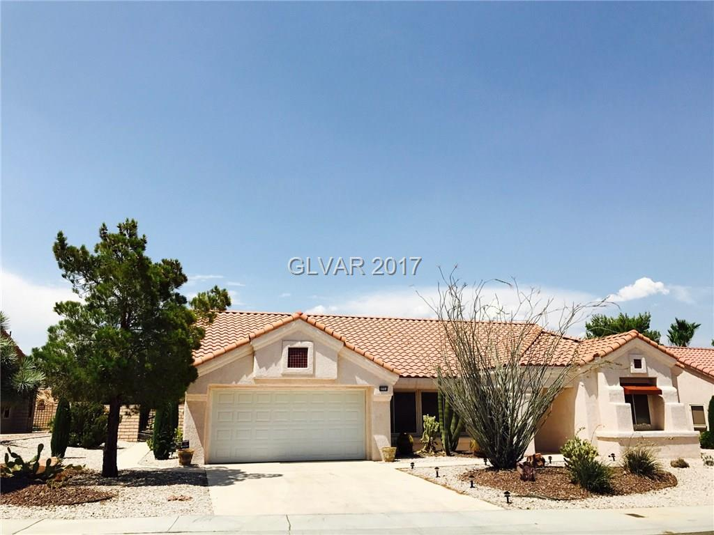 8904 STONEY POINT Drive, Las Vegas, NV 89134