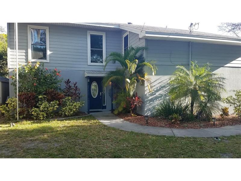 3133 N CANAL DRIVE, PALM HARBOR, FL 34684