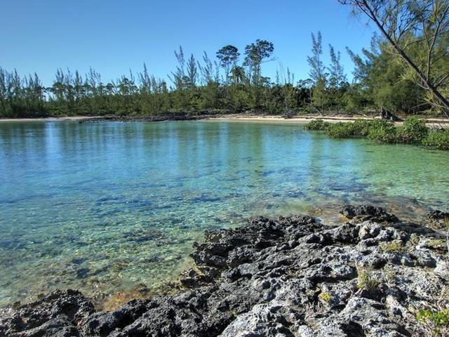 2.25 ACRE CABBAGE POINT, Abaco,  00008