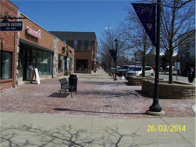 3329 AUBURN RD, Auburn Hills, MI 48326