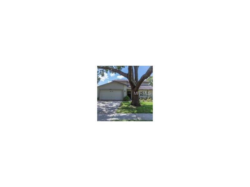 17615 SHADYSIDE CIRCLE, LUTZ, FL 33549