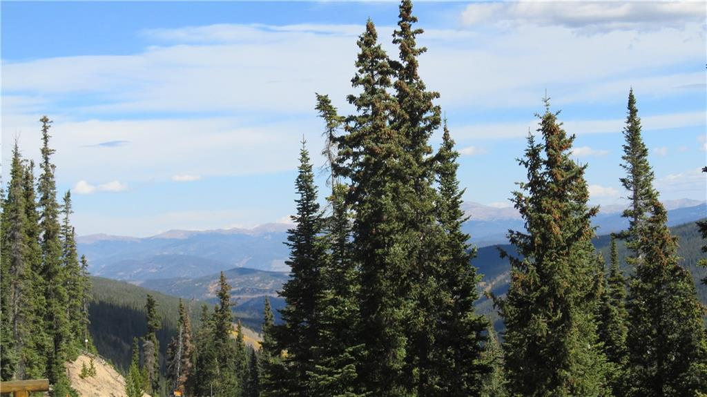 433 Carroll LANE, BRECKENRIDGE, CO 80424