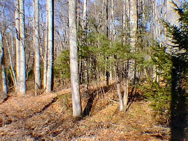 Private mountain land.  Most is steep, however there is a homesite at the top entrance. Close to NC Wildlife Management Game Lands.  One or two homesites at top entrance.