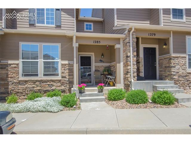1285 Timber Run Heights, Monument, CO 80132