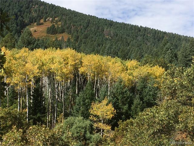 12809 Cottonwood Trail, Littleton, CO 80127