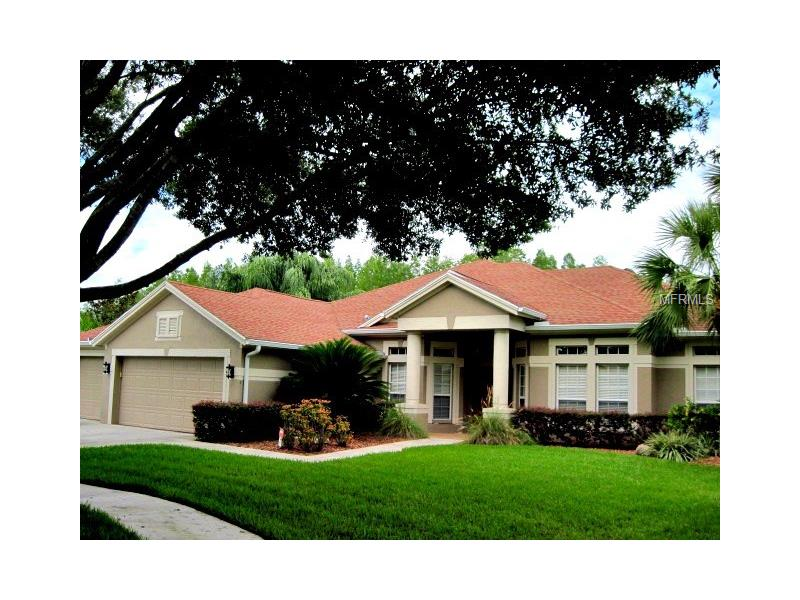 19803 SUNSPLASH LANE, LUTZ, FL 33558