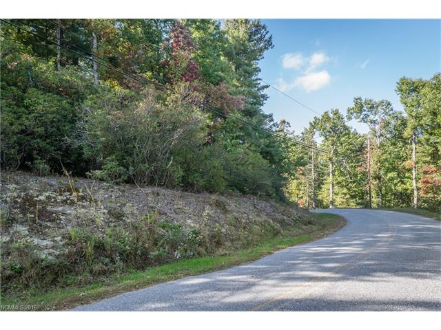 Nice building lot in  Blue Ridge Estates.   Wooded and almost level lot set just above the road. Quiet residential with paved road to property.   Nice area with larger lots and mature landscaping just beyond Flat Rock. 