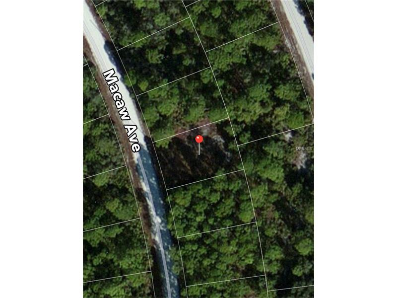1145 MACAW AVENUE, LAKE PLACID, FL 33852