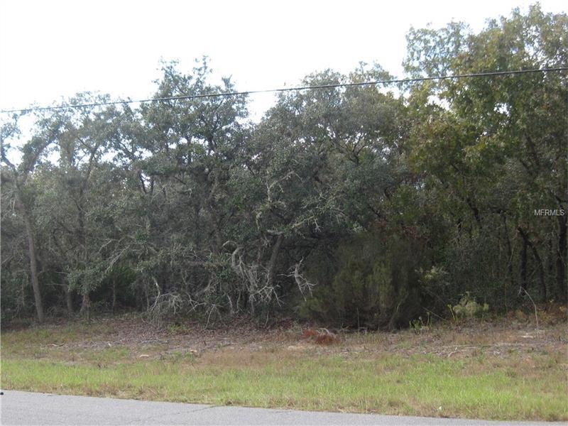 2386 N SHERIFF DRIVE, BEVERLY HILLS, FL 34465