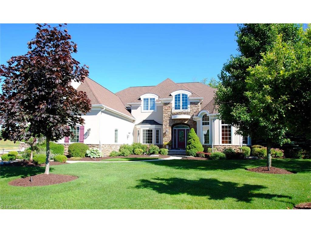 7483 Birkdale Ct, Solon, OH 44139