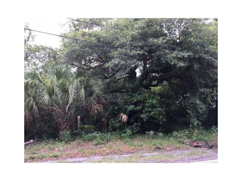 15417 LIVINGSTON AVENUE, LUTZ, FL 33559