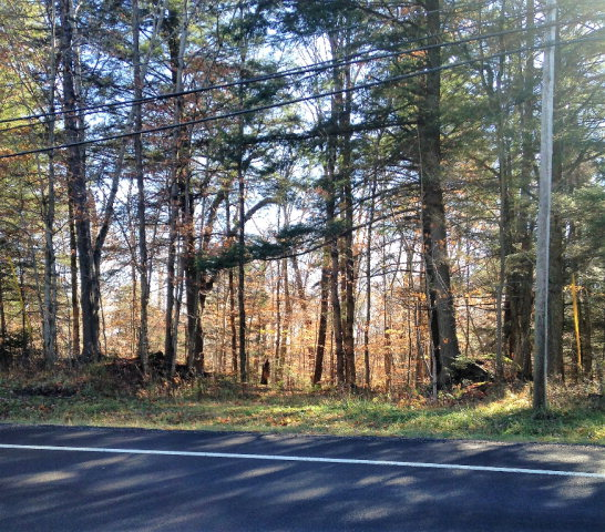 Tuttle Road, Town of Webb, NY 13420