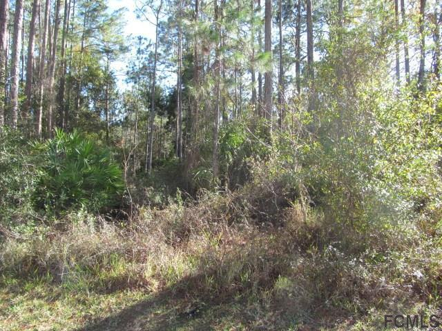 Photo 2 for Listing #226573