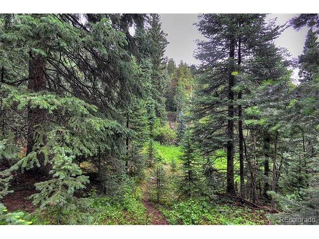 3134 Castlewood Court, Evergreen, CO 80439