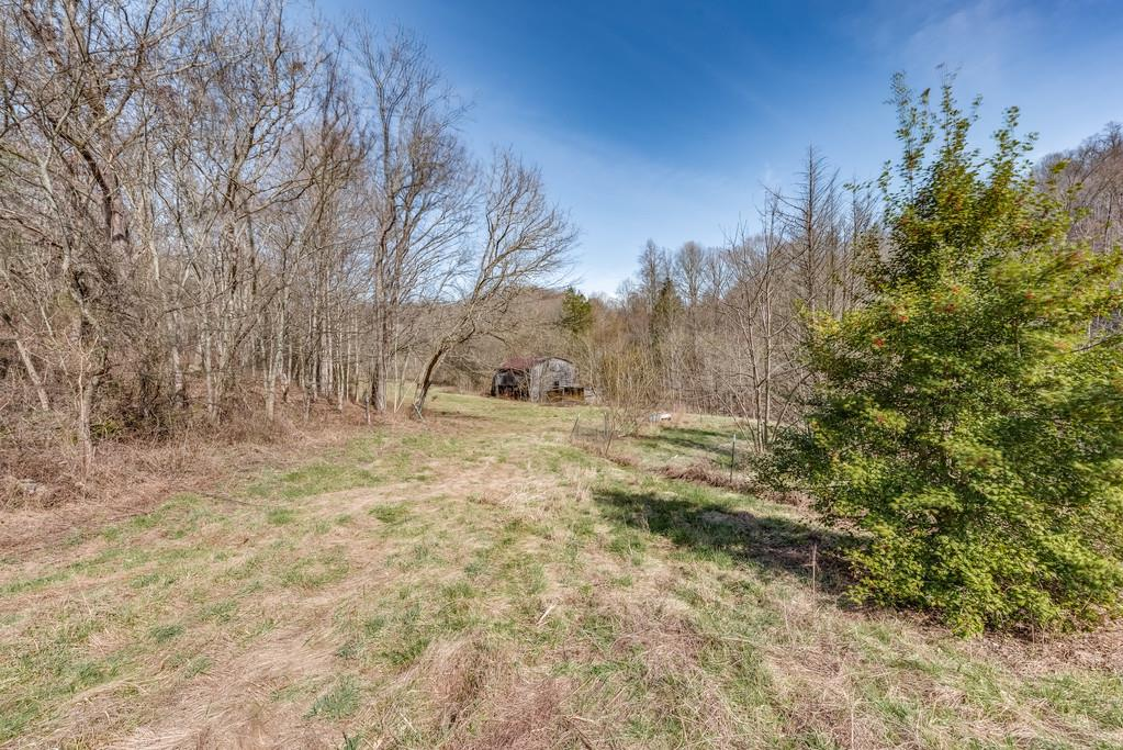 1099 Troutt Rd, Bethpage, TN 37022