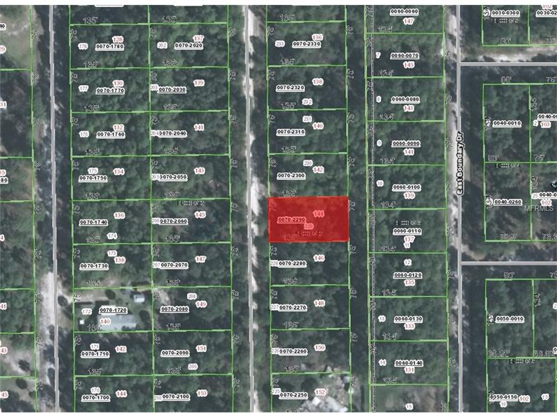 144 FOREST STREET, GEORGETOWN, FL 32139