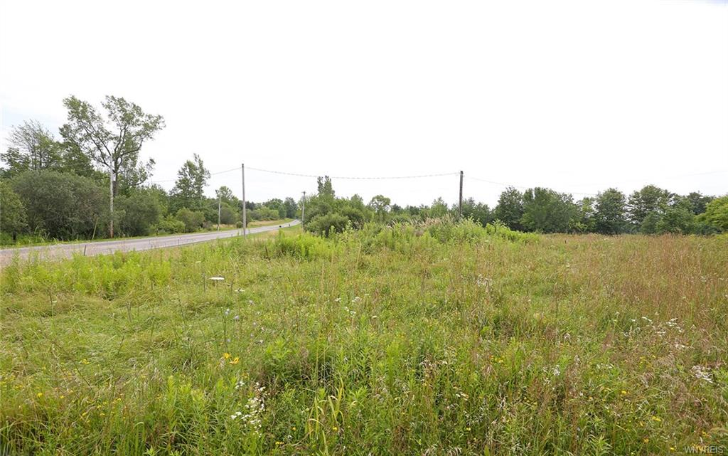 VL Harlow Road, Darien, NY 14040
