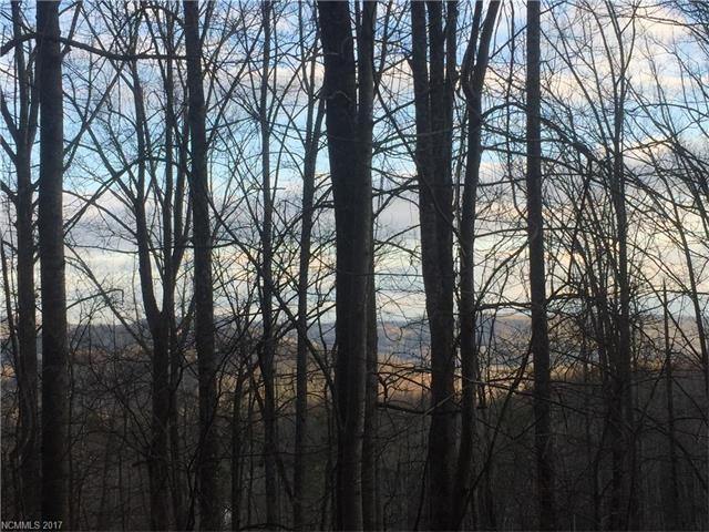 Build your dream home and enjoy the view from this private, wooded lot. Located at the pinnacle of the Lace Falls subdivision. No manufactured or modular homes allowed.