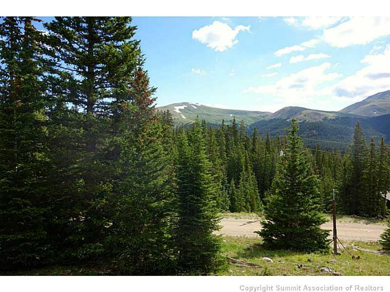 2701 QUARTZVILLE ROAD, ALMA, CO 80420