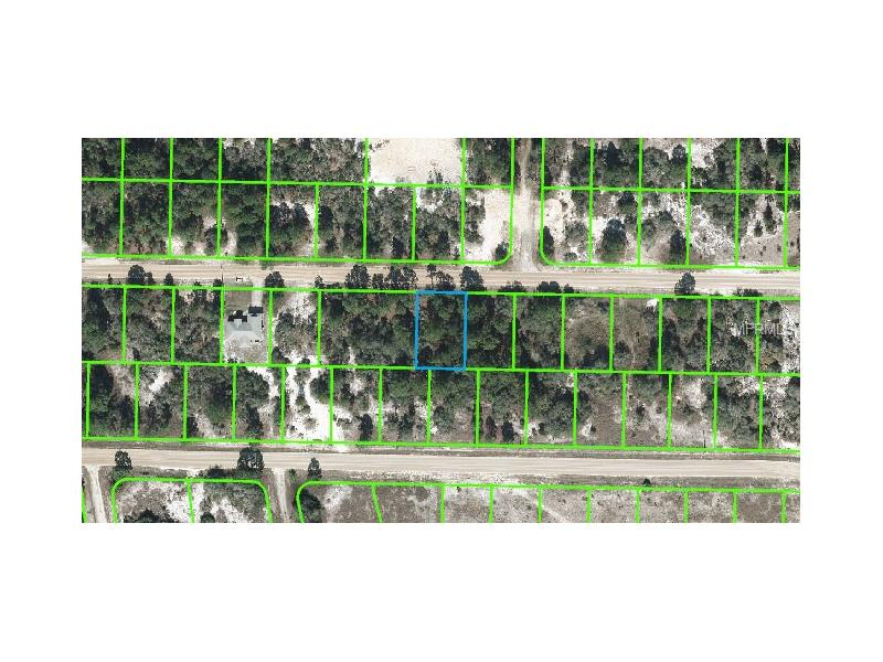 421 BLUE MOON AVENUE, LAKE PLACID, FL 33852