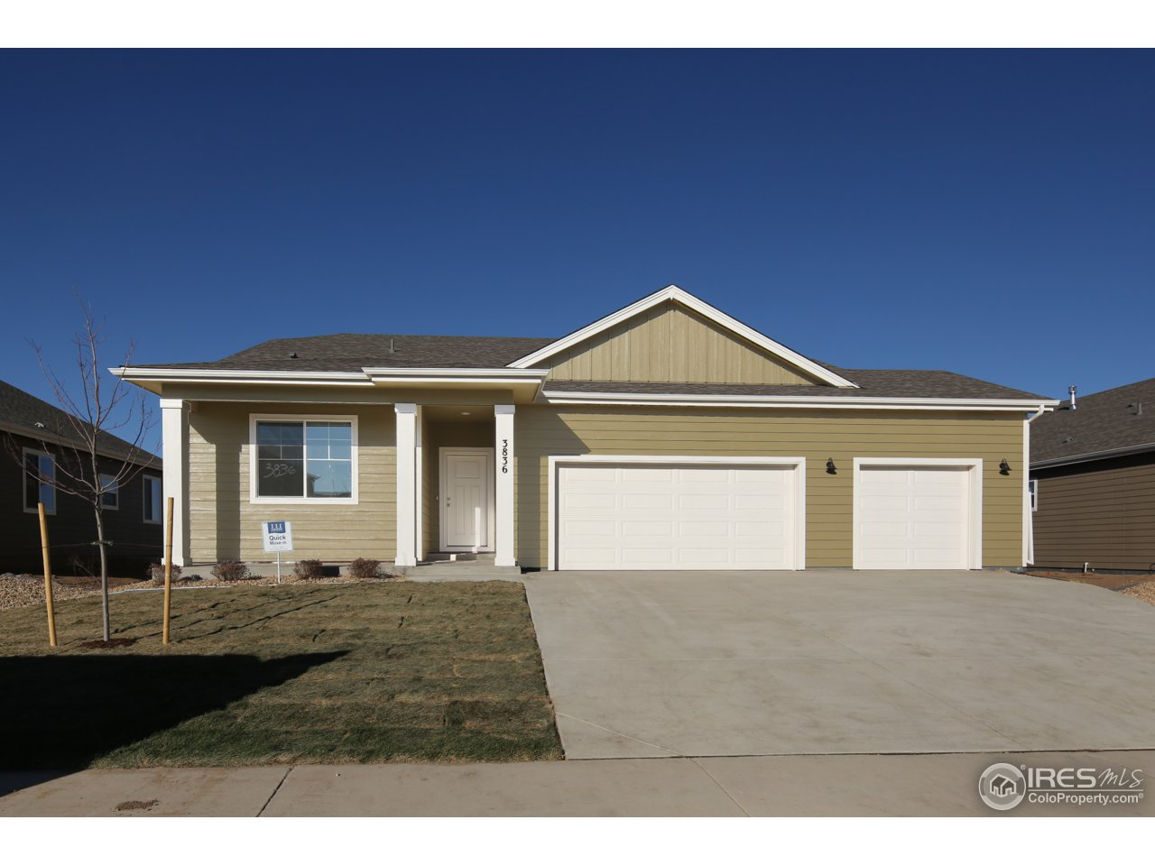 3836 Eucalyptus St, Wellington, CO 80549