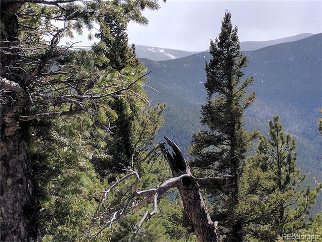Wild Wagoner Trail, Dumont, CO 80436