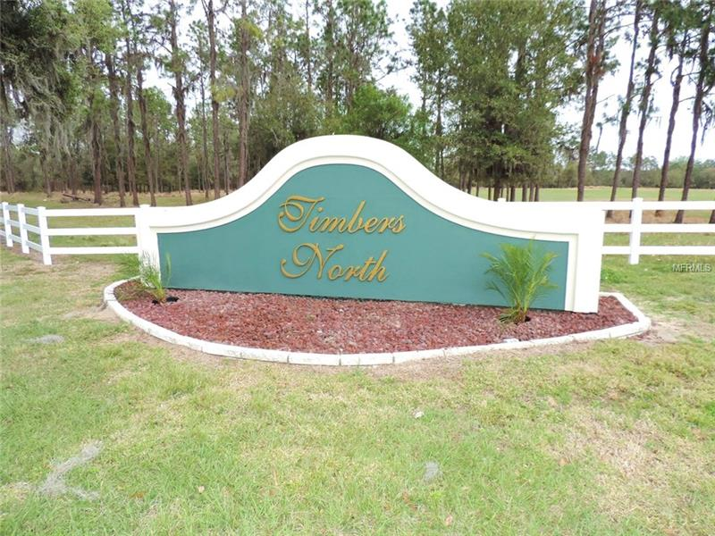 TIMBERS DRIVE, FORT MEADE, FL 33841