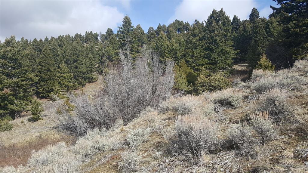 B4 Gold Dust Trail, Bozeman, MT 59715