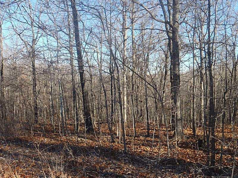 Lot 39 Deertrail DR, Pineville, MO 64856