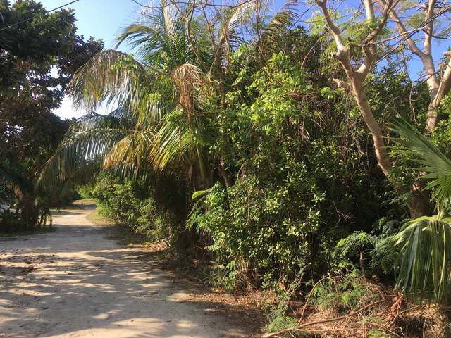 RUSSELL LOT #1, Abaco,  00008