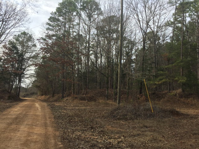 101 Fowler Rd, Other, MS 11111