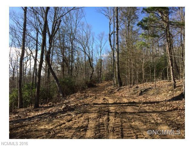 Build your mountain home or vacation getaway on this 1.63 acre lot with rhododendrons galore among beautiful rock outcroppings. West-facing long-range mountain view potential make this a perfect private forest retreat with mountain vistas. Priced below tax value - seller is motivated!