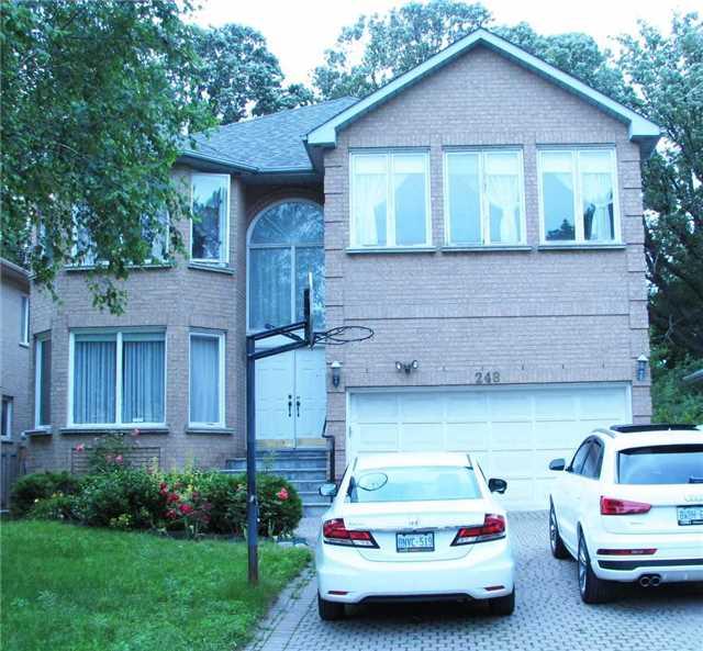 248 Princess Ave Lower, Toronto, ON M2N 3S1