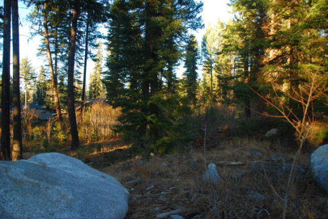 TBD Snowberry Place, McCall, ID 83638