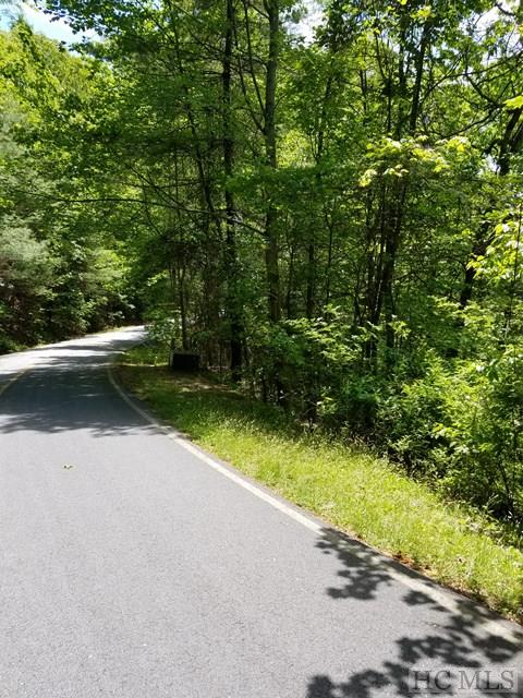 32 Elderberry Drive, Sapphire, NC 28774