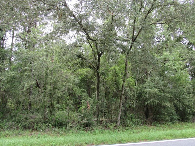 COUNTY ROAD 255, LEE, FL 32059