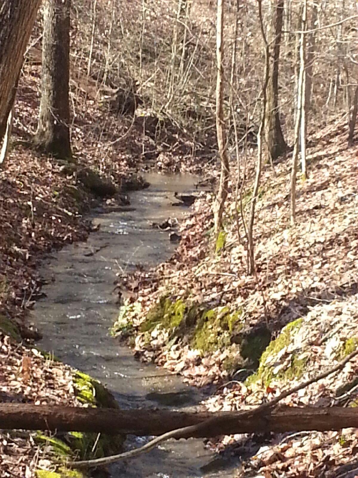 5728 N Lick Creek, Franklin, TN 37064