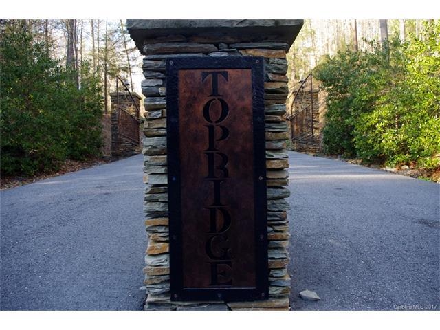 231 Top Ridge Lane, Hendersonville, NC 28792