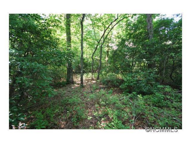 6 Hollydale 6 cottage section, Pisgah Forest, NC 28768